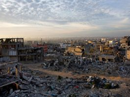 israel gaza health care genocide