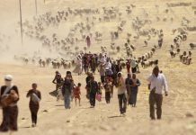 Yezidi women, Yezidis, sex slave, Islamic State, Sinjar, devil worshippers