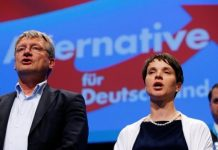 Germany, AfD, Meuthen, Petry