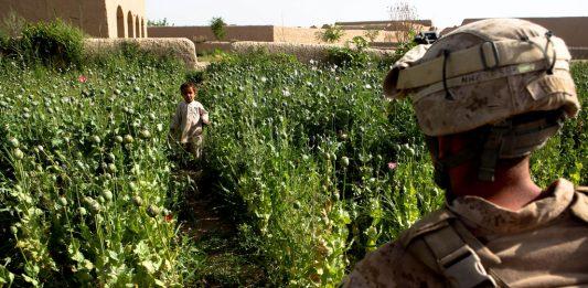 Helmand province, Afghanistan