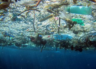 The Great Pacific Garbage Patch is a collection of plastic and other pollution in the northern Pacific Ocean