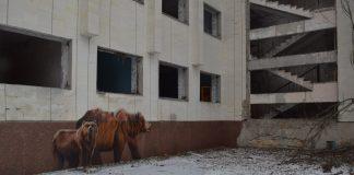 A building in Chernobyl, Ukraine