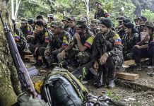 Revolutionary Armed Forces of Colombia (FARC) guerrillas