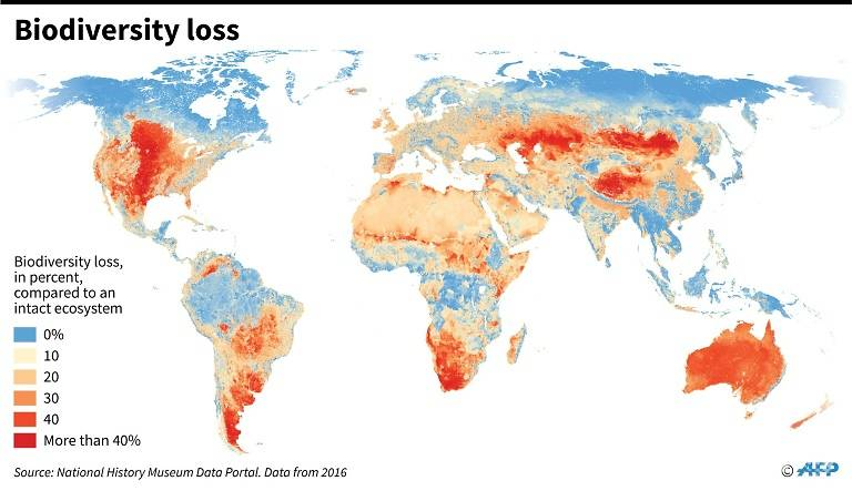 Biodiversity loss around the world, measured in percentage compared to an intact ecosystem